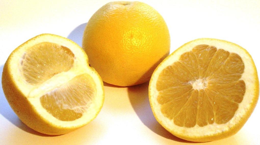 Citrus aurantium, arancia amara, sinefrina, dimagrire, integratori - www.alimentazione-su-misura.com