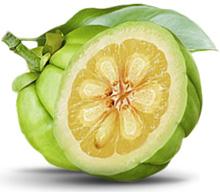 Acido idrossicitrico dimagrimento - www.alimentazione-su-misura.com